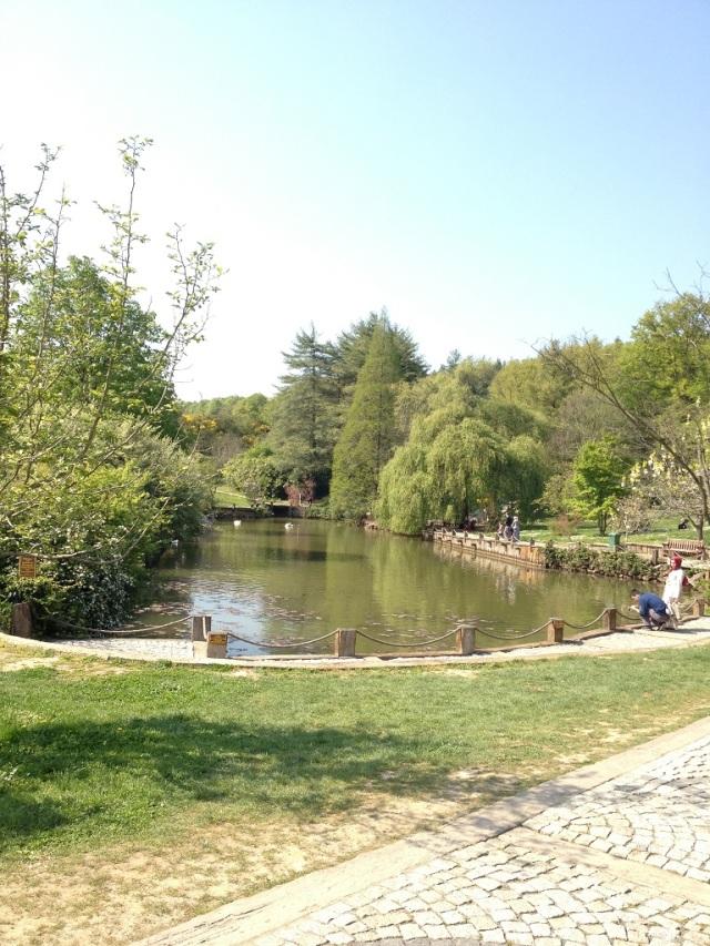 arboretum (1)