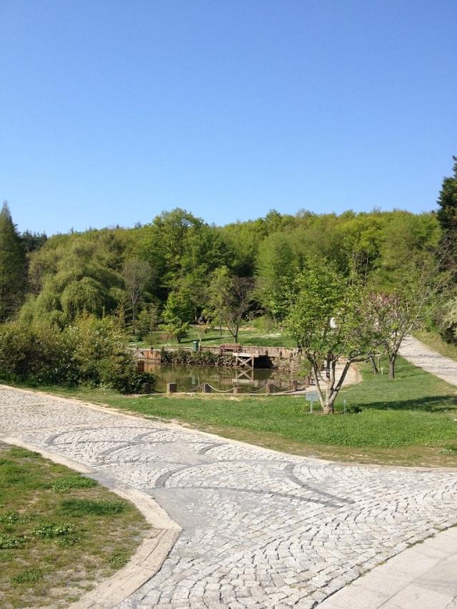 arboretum (46)
