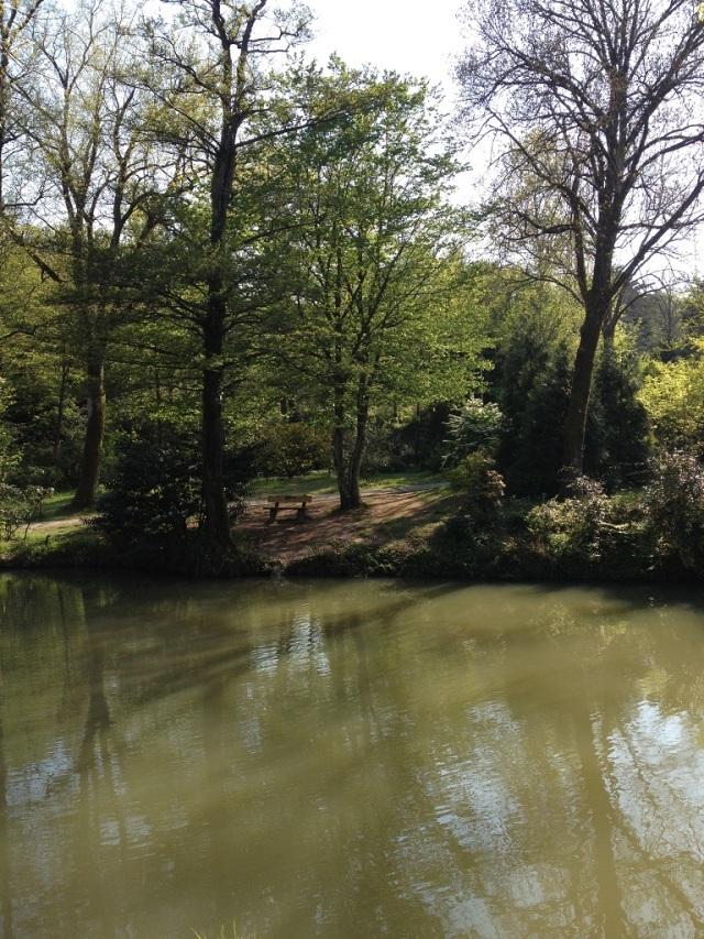 arboretum (68)