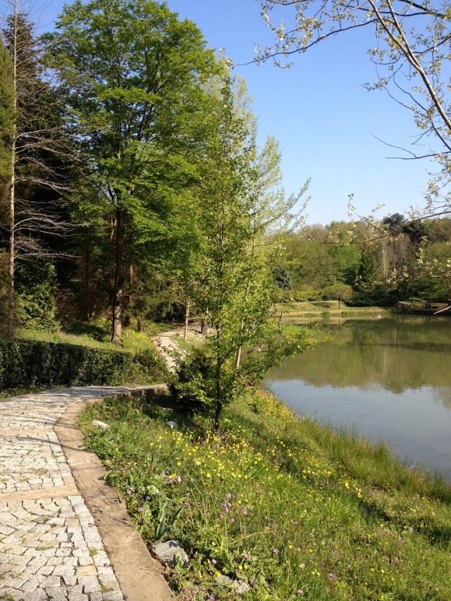 arboretum (72)