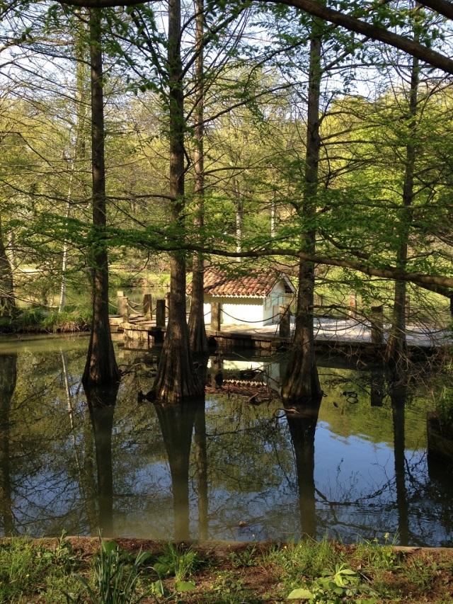 arboretum (88)