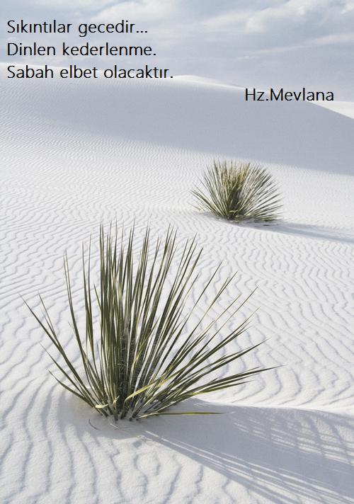 Hz.Mevlana-Sozleri (1)