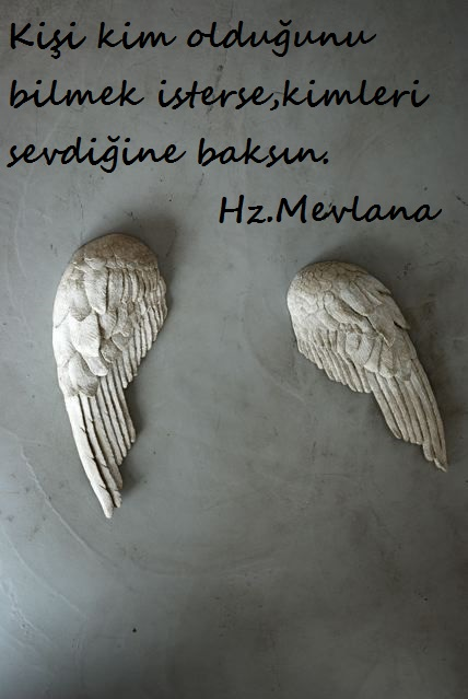 Hz.Mevlana-Sozleri (5)
