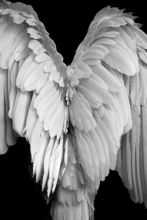 melekler-32