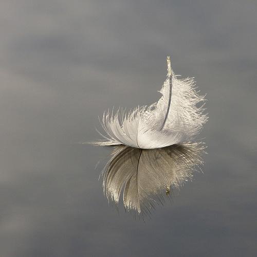 melekler (5)