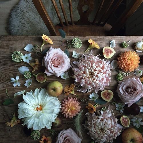 flowers-cicekler (33)
