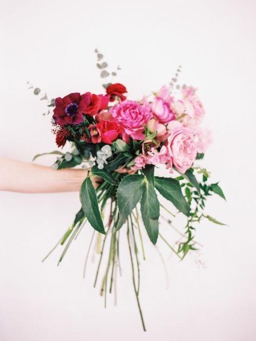 flowers-cicekler (37)