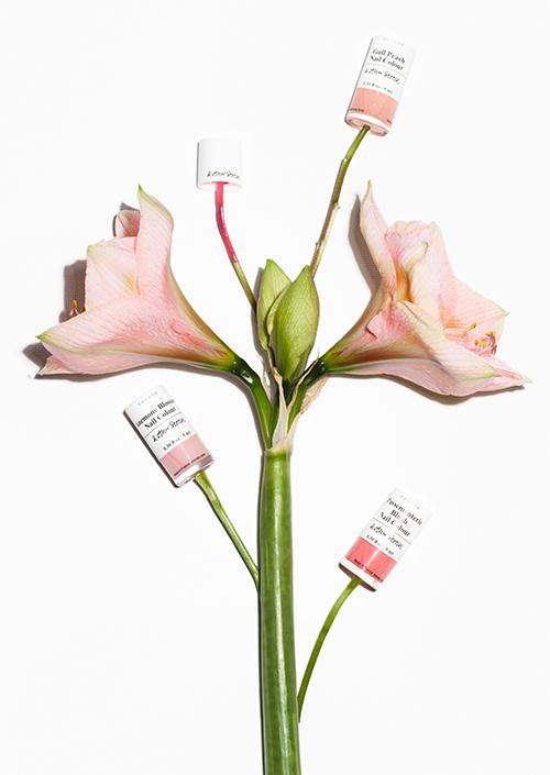 flowers-cicekler (39)