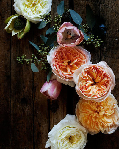 flowers-cicekler (9)