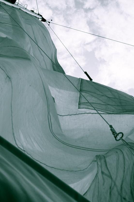 sailing (19)