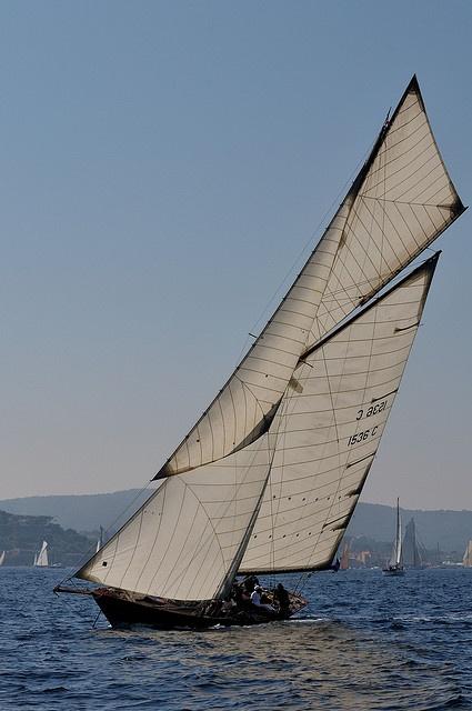 sailing (20)