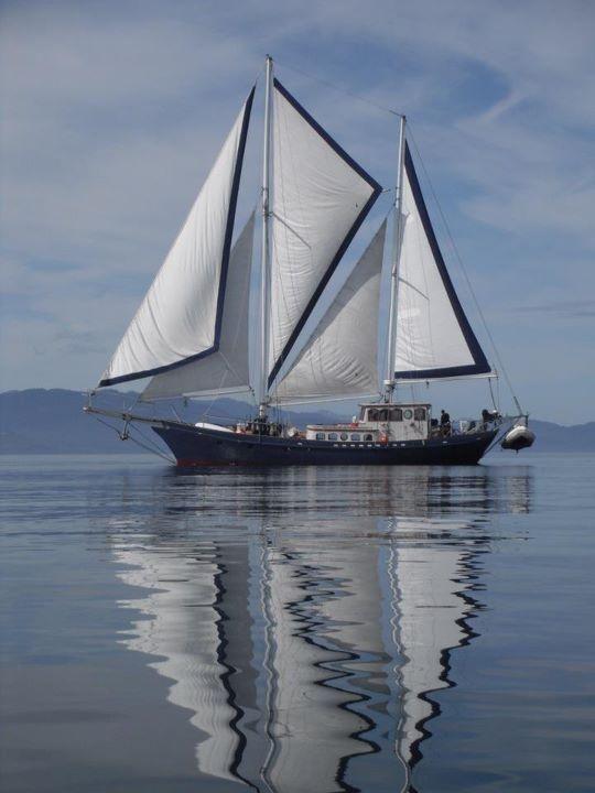 sailing (22)