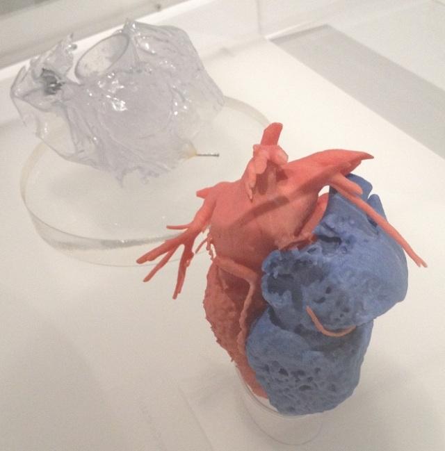 3d-printed-heart-model-1