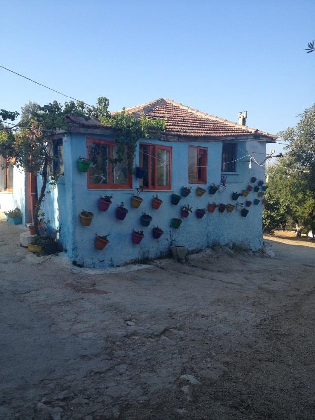 yasar-babanin-ciftligi (21)