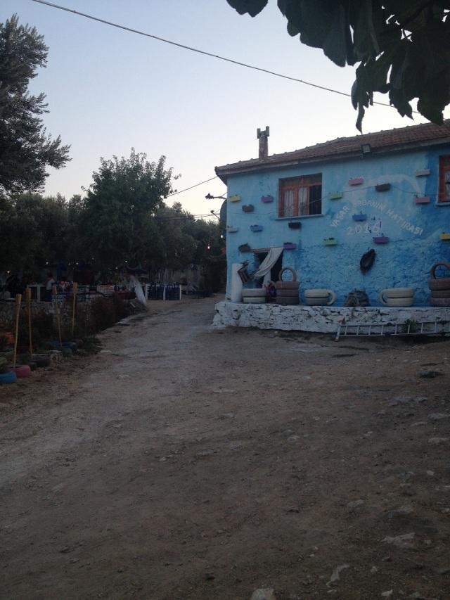 yasar-babanin-ciftligi (33)