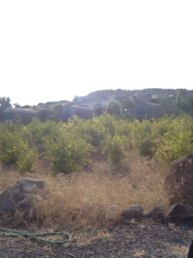 Vadi-Alacati (2)