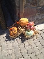 Barbaros-oyuk-festivali (105)