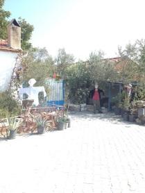 Barbaros-oyuk-festivali (140)