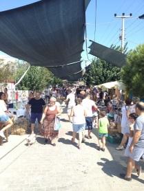 Barbaros-oyuk-festivali (53)