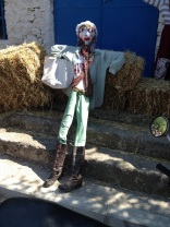 Barbaros-oyuk-festivali (83)