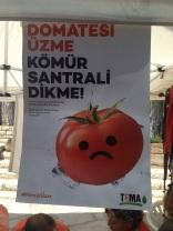 Urla-festivali (27)