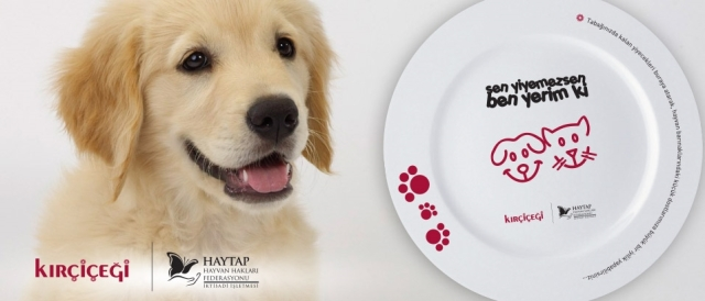 haytap-hayvan-hakları-federasyonu-sen-yiyemezsen-ben-yerim-ki-kırçiçeği-patiliyo