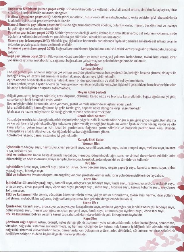 bitkiselyaglar (4)