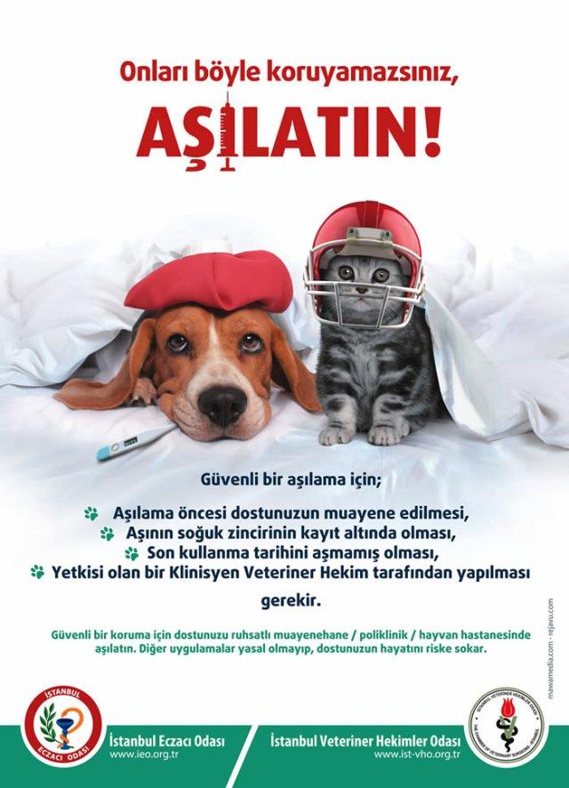 ASILATIN