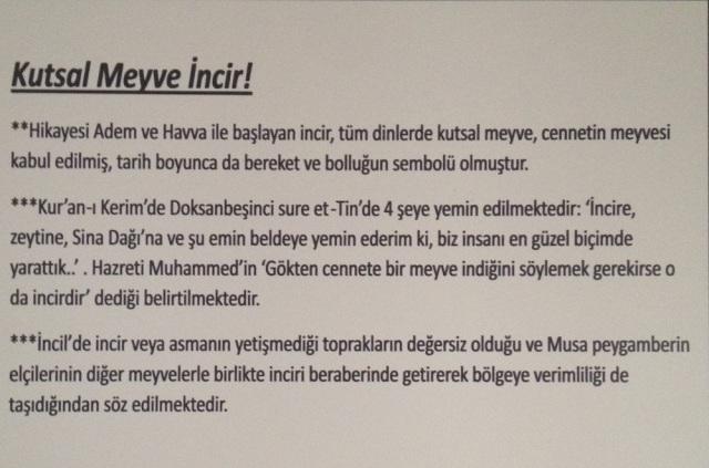 Birgi (2)
