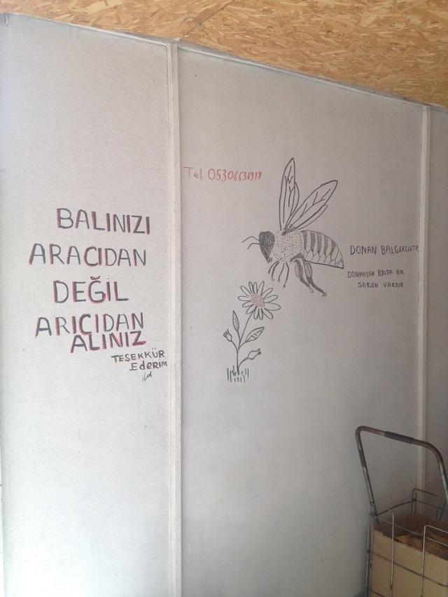 nazarköy (33)