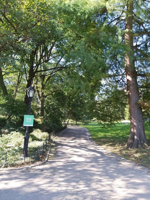 central-park-2019 (10)