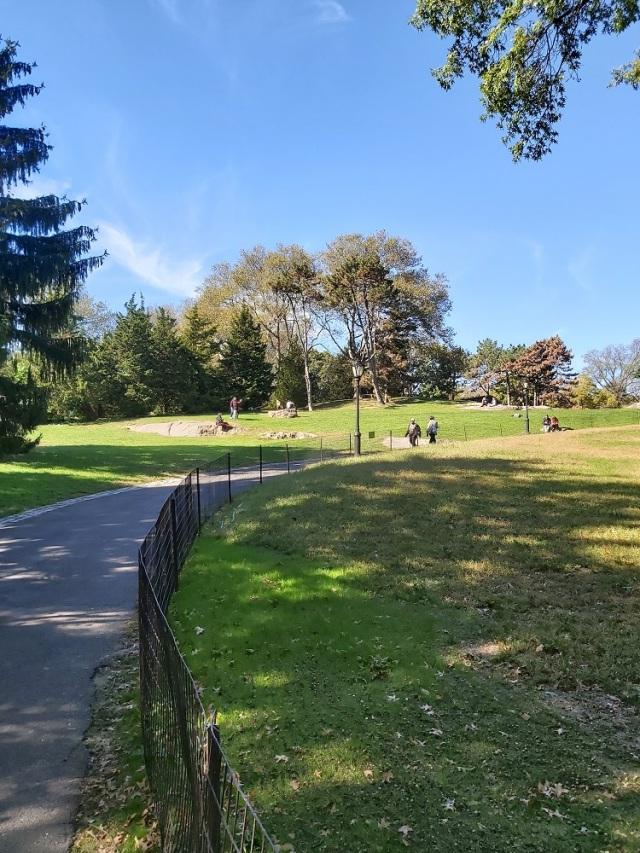 central-park-2019 (13)
