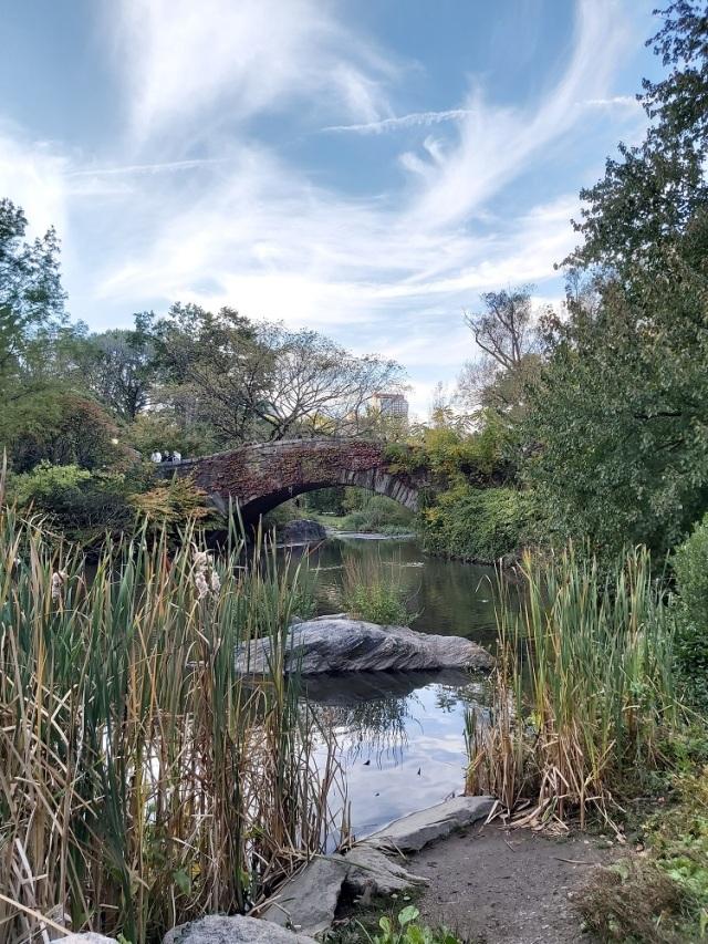central-park-2019 (38)