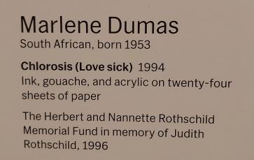 marlene-dumas-moma (3)