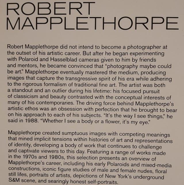 robert-mapplethorpe (2)