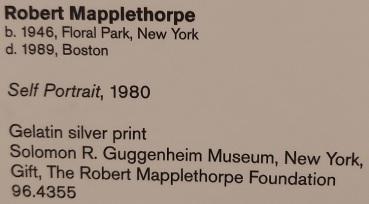 robert-mapplethorpe (9)