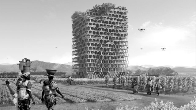 africa-vertical-farming-bw-1680x945