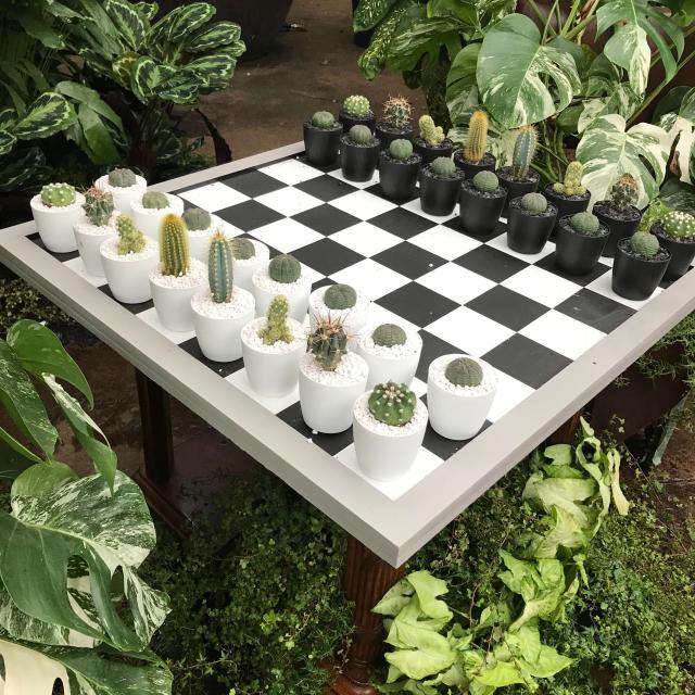 cactus-chess-set